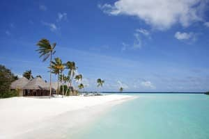 White sand beach at Constance Halaveli Resort, Maldives