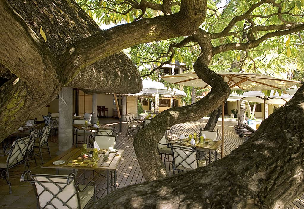 Indigo restaurant, Constance Belle Mare Plage