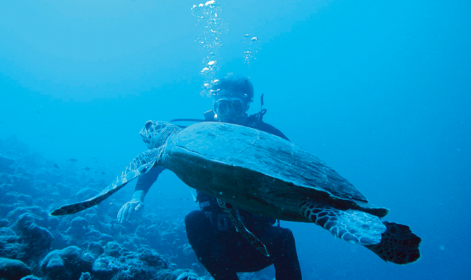 Swim with turtles at Constance Moofushi