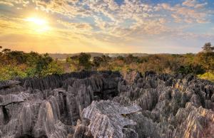 The tsingys of Bermaraha