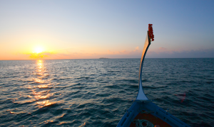 Experience a sunset cruise in a traditional dhoni boat