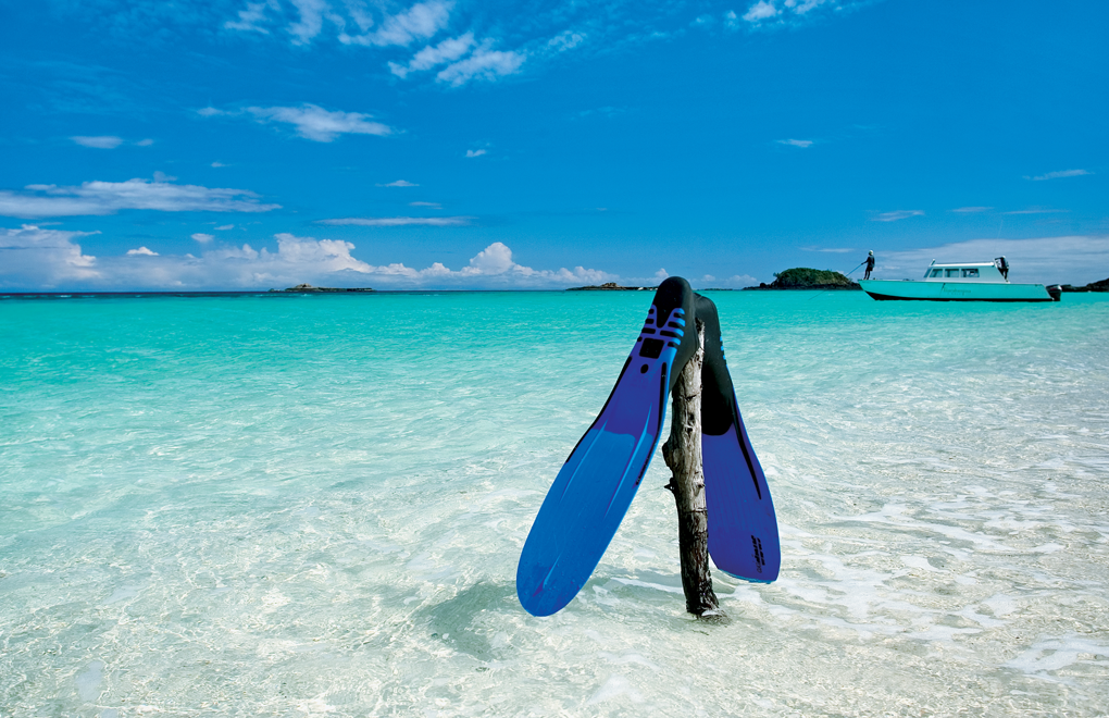 Your dream dive holiday?