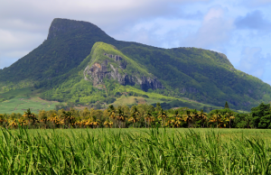 Lion Mountain, one of the many spectacular views from Mount Brise