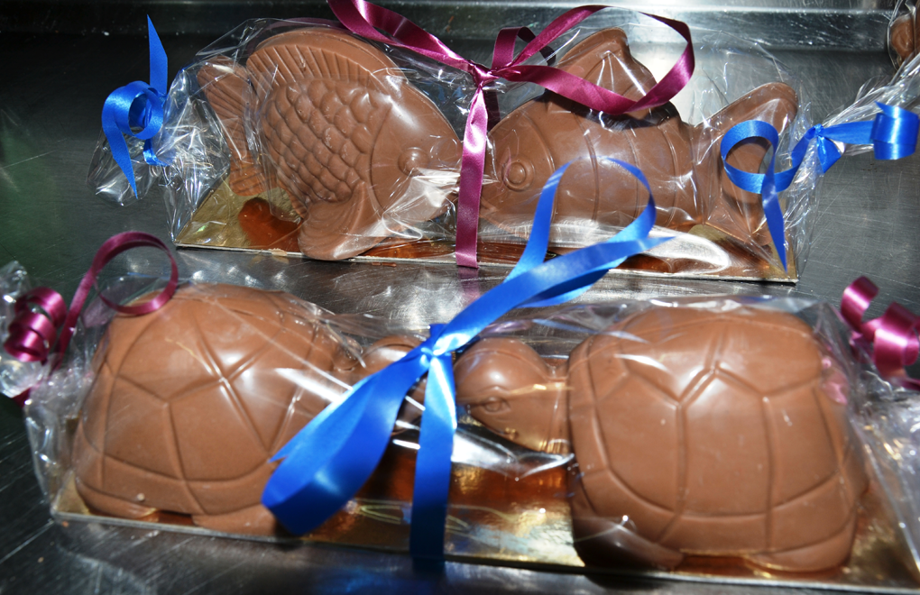 Treats for Easter: chocolate marine life