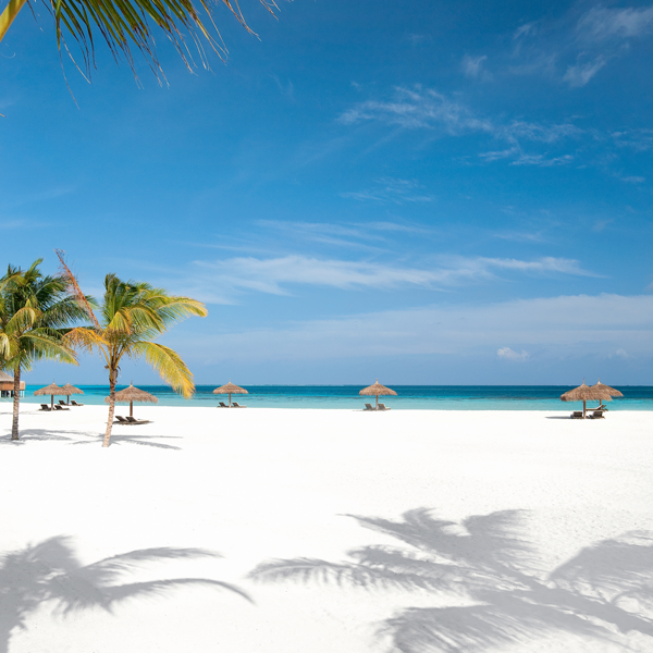4. Welcome to Constance Moofushi, today's Beach Thursday...