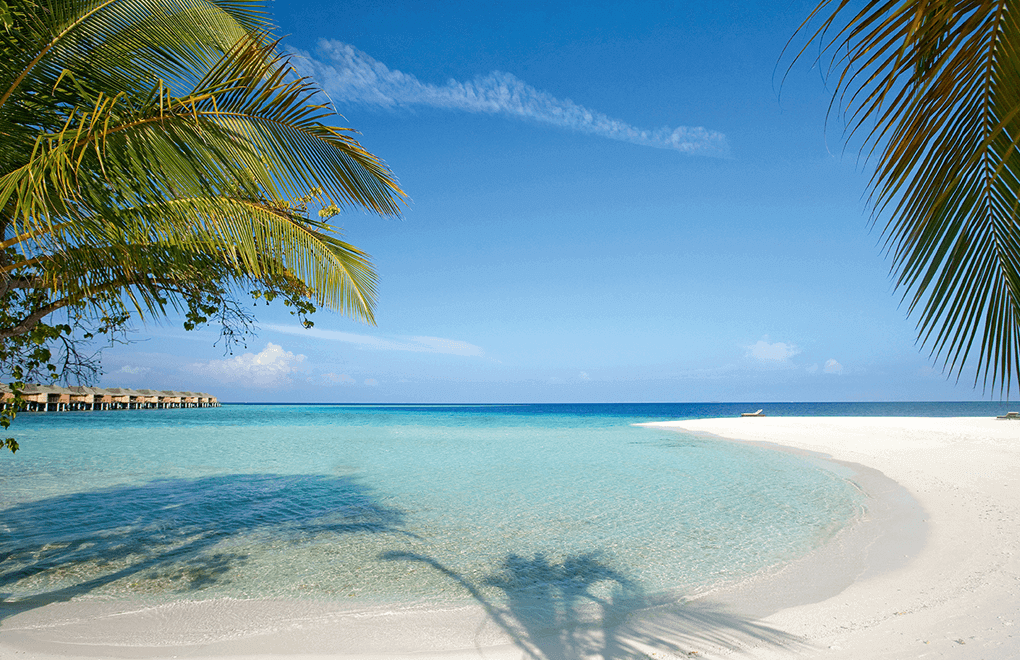 Message in a Bottle: Moofushi Beach View