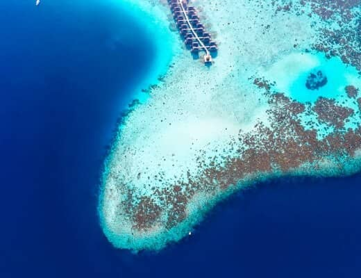 Constance Moofushi is perfect for diving