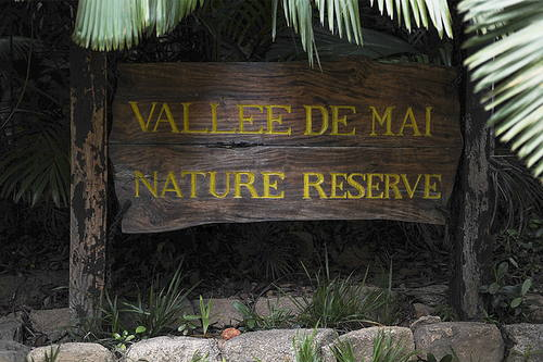 Valee de Mai Seychelles