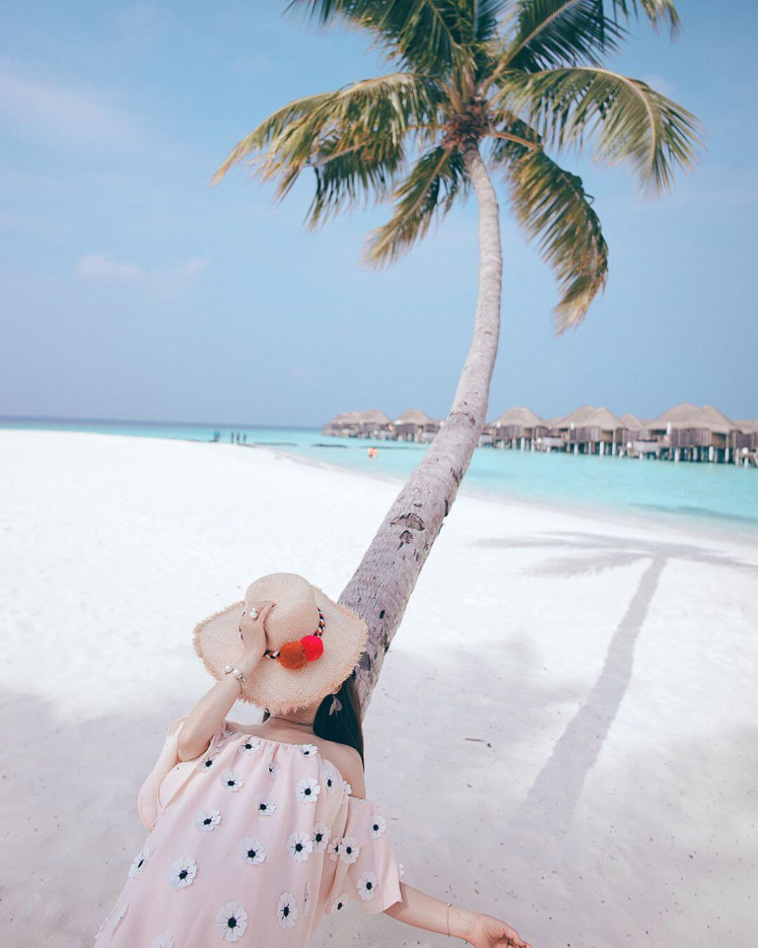 straw hat palm tree beach trends