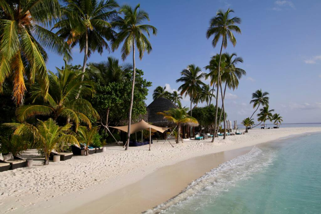 maldives family holiday beach palm trees