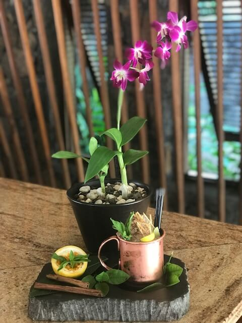 Mauritian Spiced Mule at Constance Prince Maurice in Mauritius